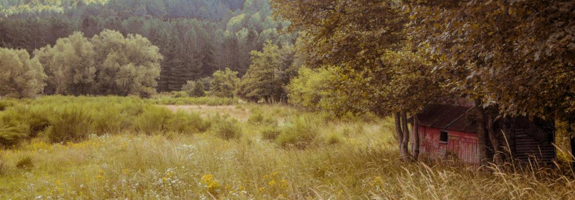autunno calabria ionica