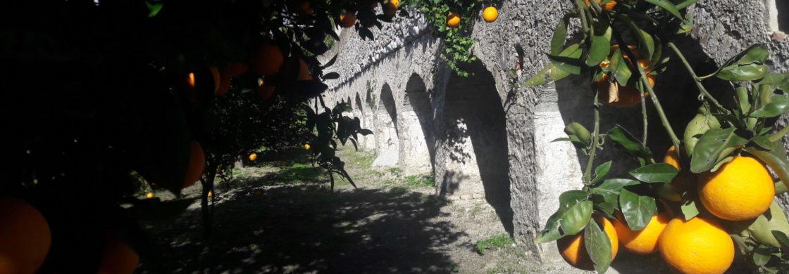 masseria torre zuvinu dimora storica