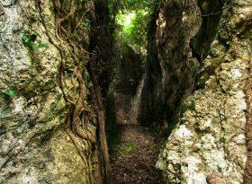 grotta di nardodipace 1